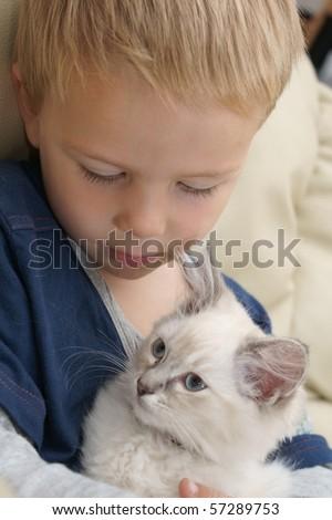 boy with kitten - stock photo