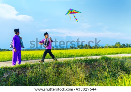 boys flying a kite in a paddy field during blue sky - stock photo