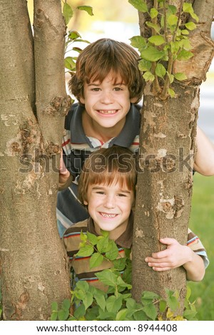 Boys in a Tree - stock photo