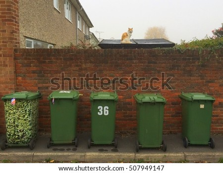 Bracknell,England - November 01, 2016: A row of standard green wheelie bins for domestic garbage disposal outside a house in England, overlooked by a cat on a shed roof
