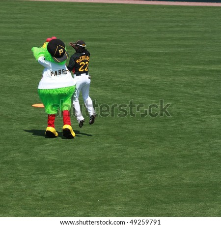 BRADENTON, FLORIDA- MARCH 19:  Pirates Mascott and Andrew McCutchen ham it up on the field before the game on March 19, 2010 in Bradenton Florida. - stock photo