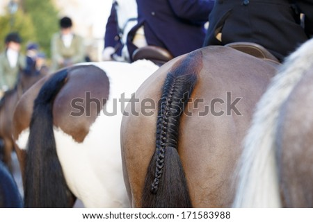 Braided pony tail, close up - stock photo