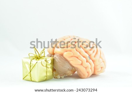 brain and gift