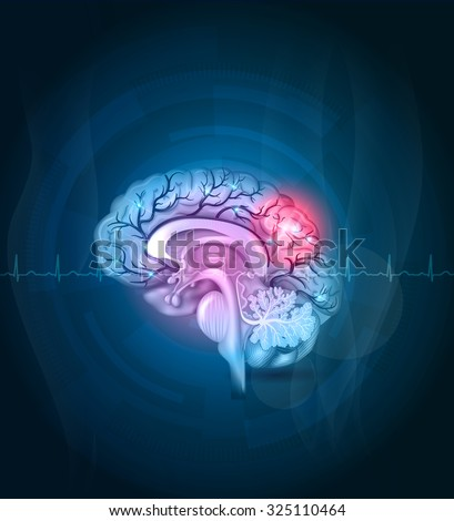 Brain cross section, arteries detailed illustration abstract blue background. Stroke abstract treatment concept, cardiogram at the front