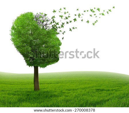 Brain disease with memory loss due to Dementia and Alzheimer's illness as medical icon of a tree shaped as human head and brain losing leaves as concept of intelligence decline. - stock photo