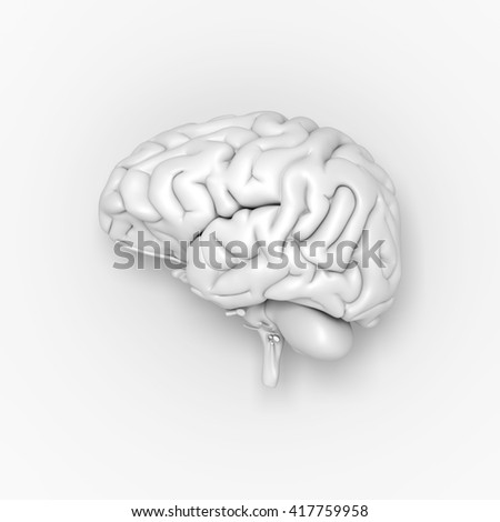Brain on the light grey background. 3D illustration - stock photo