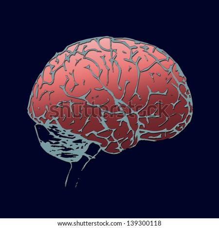 Brain Power. - stock photo