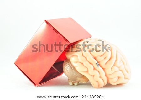brain, thinking out of box  - stock photo