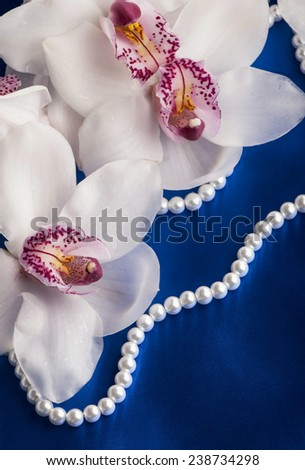 branch beautiful orchids on a blue background - stock photo