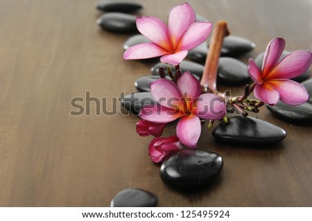 Branch frangipani and zen stones on wooden board - stock photo