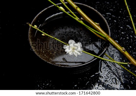 branch of cherry blossom in bowl on wet background - stock photo