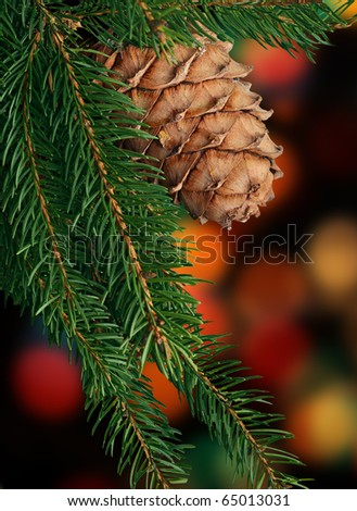 Branch of Christmas tree against colorful light background - stock photo