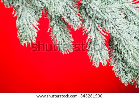 branch of Christmas tree on red background - stock photo