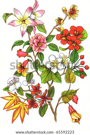 branch of flowers - stock photo