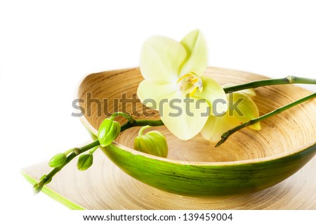Branch of orchid flowers in a bowl of bamboo. Spa concept. - stock photo