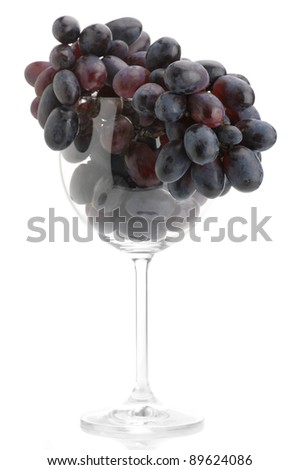 Branch of purple grape in wineglass isolated on white background. - stock photo