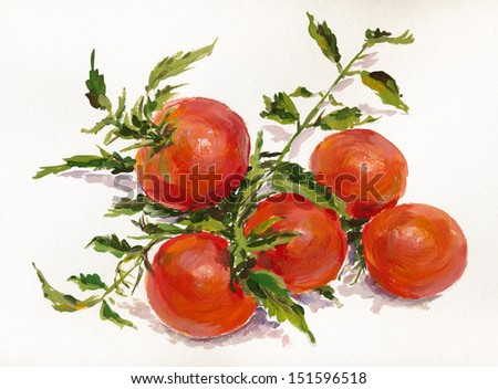 Branch of ripe tomatoes. Still life. Gouache on paper. - stock photo