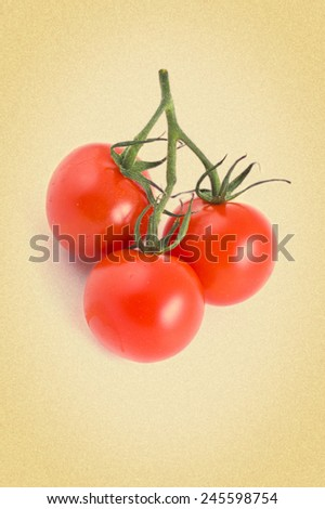 branch of the three cherry tomatoes on a white background. Picture in retro style. - stock photo