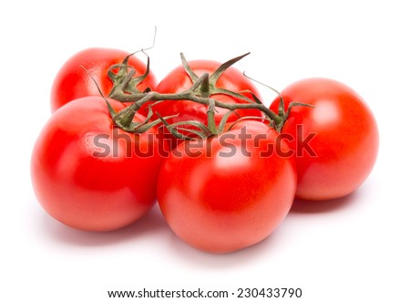 branch of tomatoes - stock photo