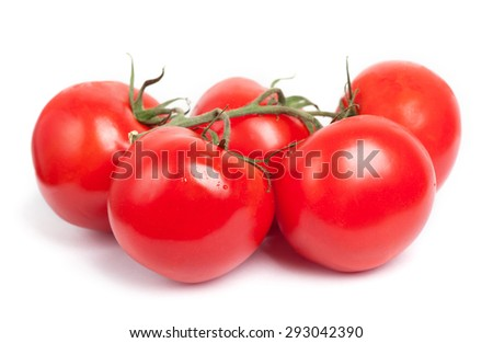 Branch of tomatoes isolated on white background - stock photo