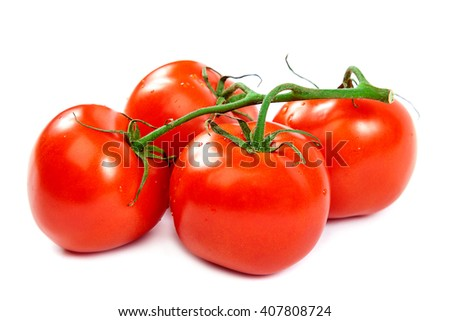Branch tomatoes isolated on white background. - stock photo