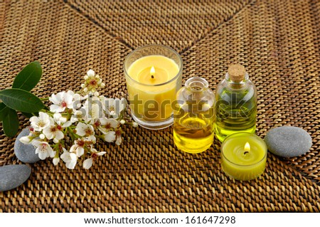 Branch tropical and massage oil ,candle, stones on mat