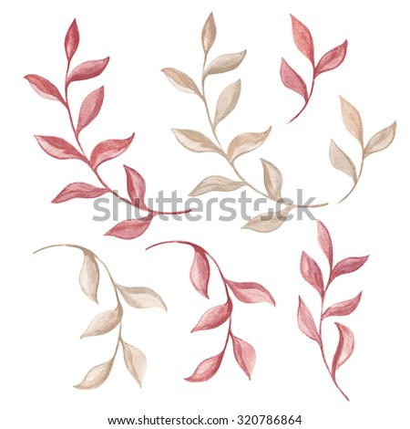 Branches foliage. Watercolor design elements on a white background. - stock photo