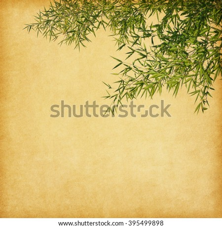 branches of a bamboo on old paper background. - stock photo