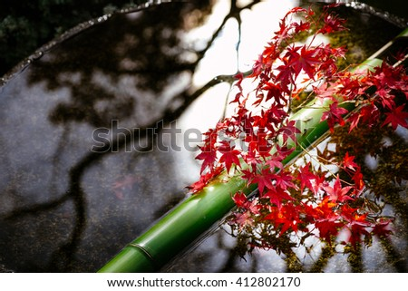 Branches of autumn foliage on the pond with glare of sunlight, Japan - stock photo