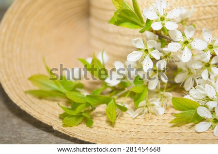 branches of blooming trees on a background of straw hat