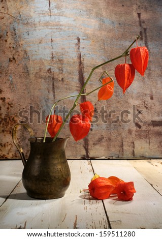 Branches of  chinese lantern in copper jug on table - stock photo