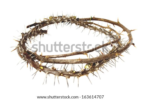 Branches of thorns woven into a crown depicting the crucifixion of Christ on an white background