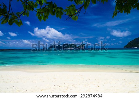 Branches Overhanging Island Lagoon  - stock photo