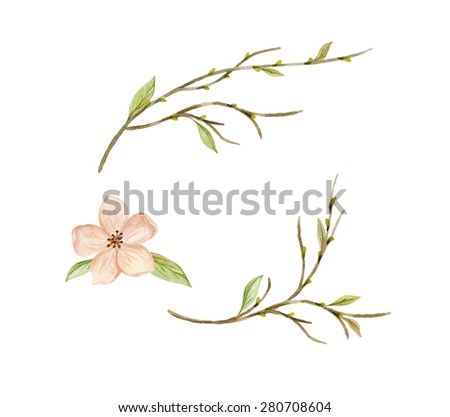 Branches with leaves, buds and flower. Hand painted watercolor illustration - stock photo