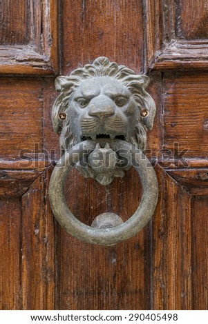 Brass lion head knocker on an old door