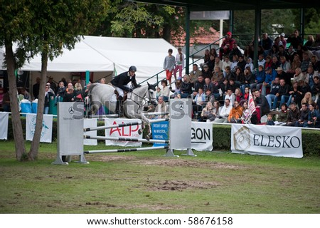 BRATISLAVA, SLOVAKIA - AUGUST 7: WATHELET Gregory on horse CRUSHING Z in action during the third round of qualification to Grand Prix CSIO-W*** August 7, 2010 in Bratislava, Slovakia - stock photo