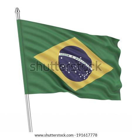 Brazil (Brasil) flag - stock photo