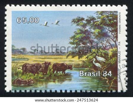 BRAZIL - CIRCA 1984: stamp printed by Brazil, shows  buffalon, circa 1984 - stock photo