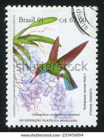 BRAZIL - CIRCA 1991: stamp printed by Brazil, shows  Colibri, circa 1991 - stock photo