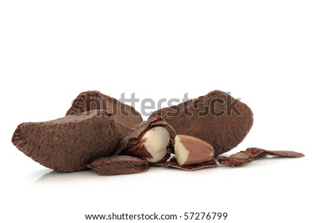 Brazil nut group whole and shelled, isolated over white background with reflection.