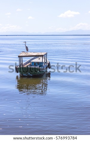 Brazil, State of Rio de Janeiro, Paqueta Island, View of bird on top of a fishing boat