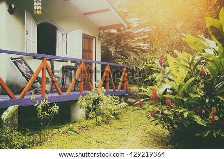 Brazil traditional house. palm trees in the garden,  Brasil - stock photo