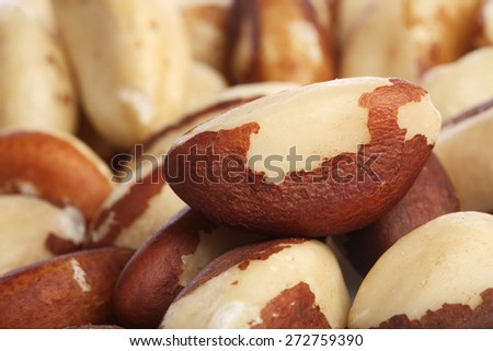 Brazilian nut on white background - stock photo