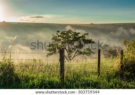 Brazilian rural landscape under autumn sunrise sunbeams - stock photo