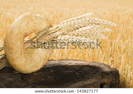 Bread and wheat cereal crops. Cereal crops on the background