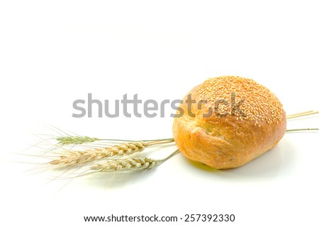 Bread isolated on white background. - stock photo