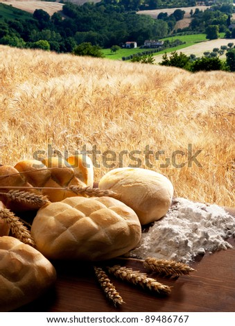 Bread with corn on cereal field