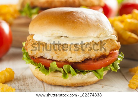Breaded Fish Sandwich with Tartar Sauce and Fries - stock photo