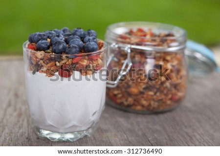 Breakfast in the garden: coconut yogurt topped with grain free  granola made with mixed nuts, seeds, raisins, with blueberries on the top, selective focus - stock photo