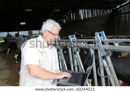 Breeder in barn with computer - stock photo